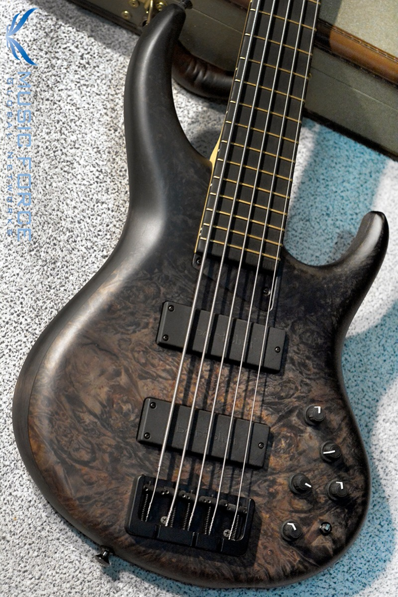 MTD 535-24 US Custom Bass Alder Body/Maple Burl Top-Hand Rubbed Stain Black Fade w/Ebony FB(2017년산/신품)