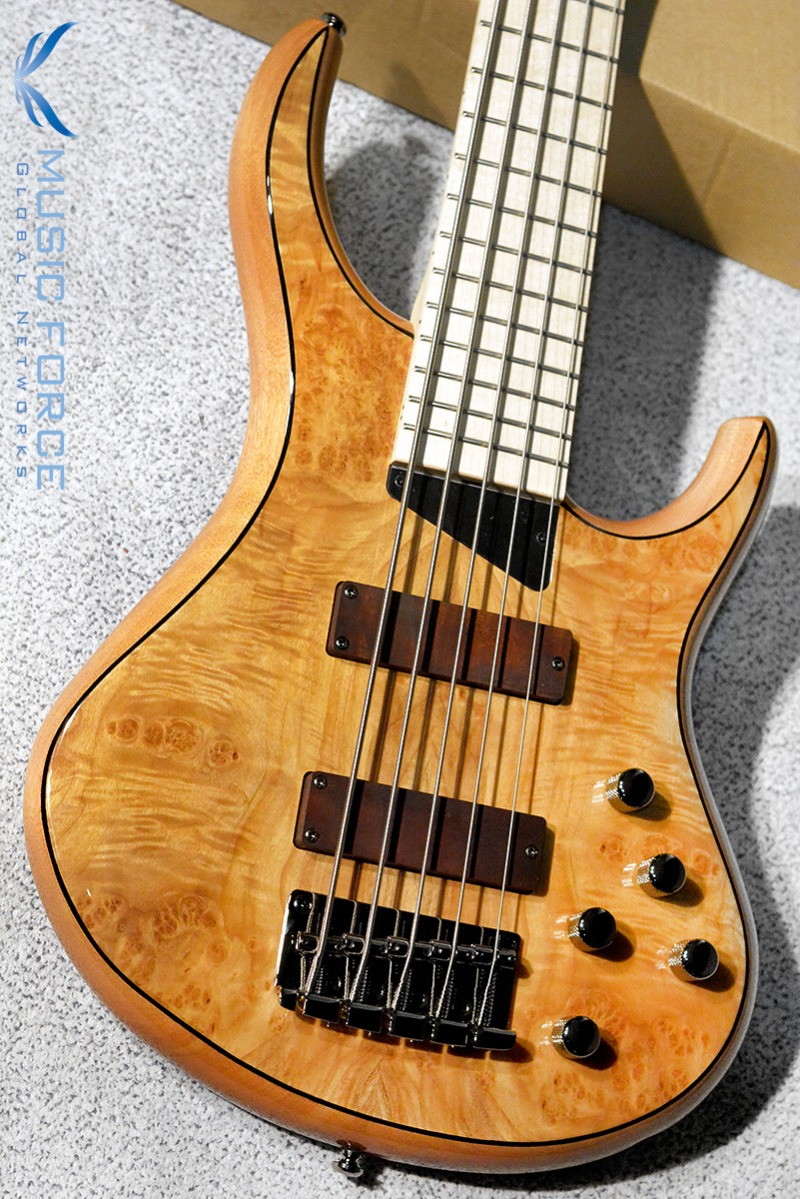 MTD(Michael Tobias Design) Kingston Z 5 String-Natural Gloss w/Maple Burl Top & Maple FB(2019년산/신품)