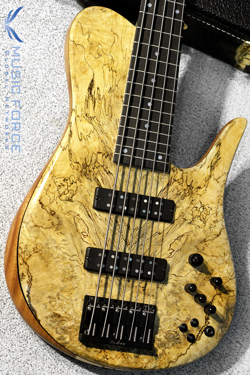 [창사12주년기념세일(~6/30까지)] Fodera Custom Imperial Elite 5-Spalted Belize Burl Top w/5-Piece Maple Neck & Ebony FB(신품)