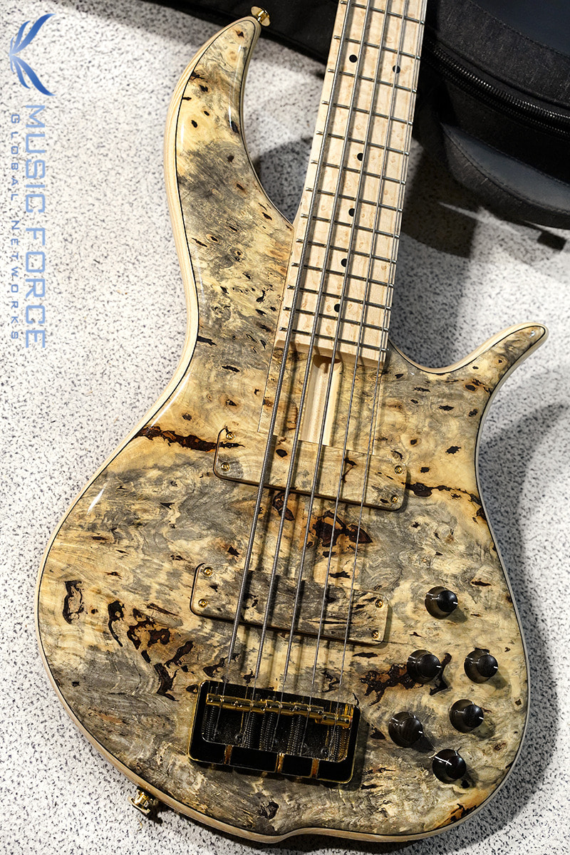 F-Bass BN5 Buckeye Burl Top w/Birdseye Maple FB & Gold HW(2019년산/신품)