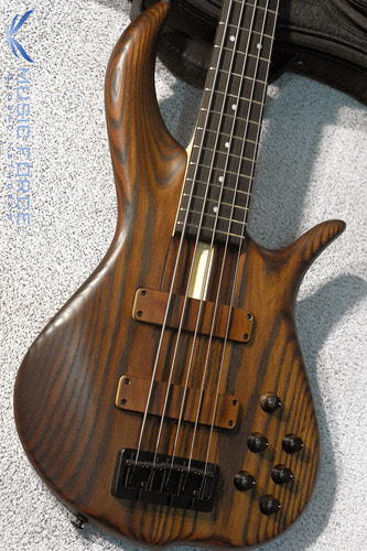 F-Bass BN5 Roasted Ash Body w/Macassar Ebony FB & Black HW(2018년산/신품)